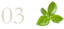 03 e foglie basilico