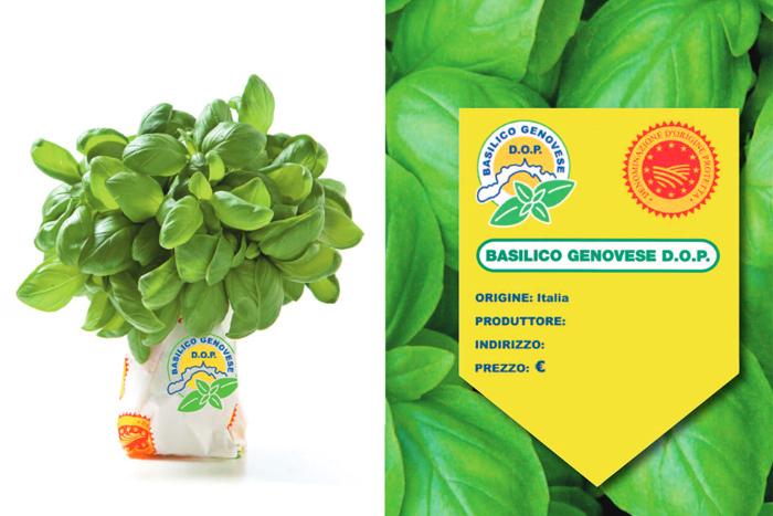 etichette basilico